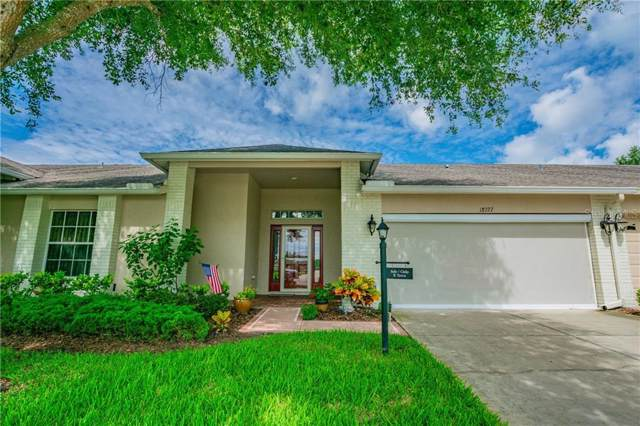 18727 Water Lily Lane, Hudson, FL 34667 (MLS #W7814476) :: Team 54