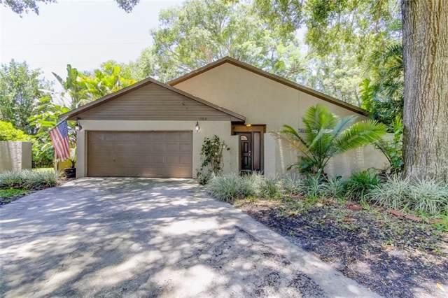 664 Channing Drive, Palm Harbor, FL 34684 (MLS #W7814570) :: Bridge Realty Group