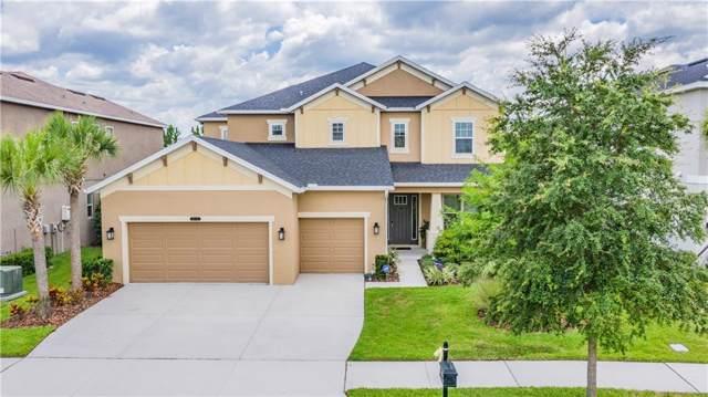 8773 Bella Vita Circle, Land O Lakes, FL 34637 (MLS #W7814571) :: Premier Home Experts