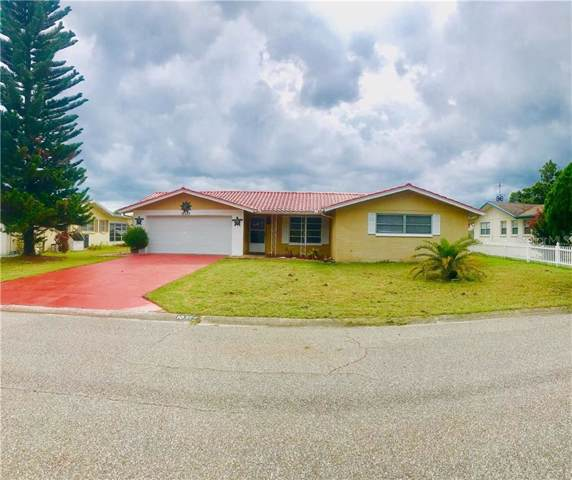 10335 Loquat Drive, Port Richey, FL 34668 (MLS #W7814674) :: Team Bohannon Keller Williams, Tampa Properties