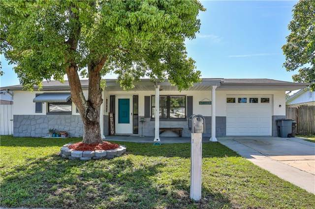 1042 Solar Drive, Holiday, FL 34691 (MLS #W7814813) :: The Duncan Duo Team