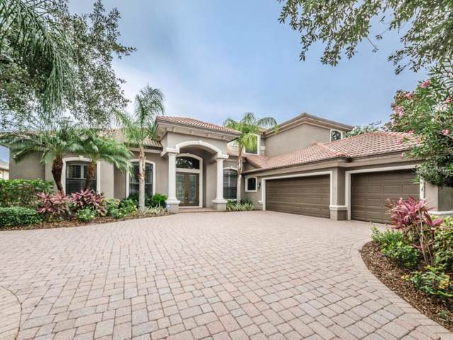 1109 Toscano Drive, Trinity, FL 34655 (MLS #W7814944) :: Griffin Group