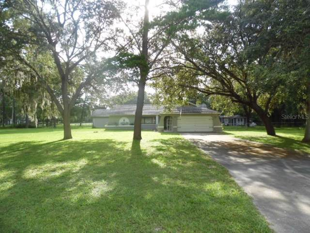 18614 Kelly Road, Spring Hill, FL 34610 (MLS #W7814961) :: Ideal Florida Real Estate