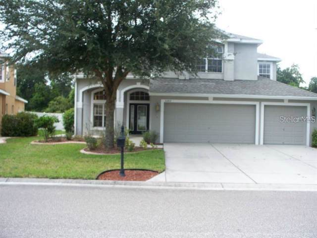 11203 Oyster Bay Circle, New Port Richey, FL 34654 (MLS #W7814983) :: The Duncan Duo Team