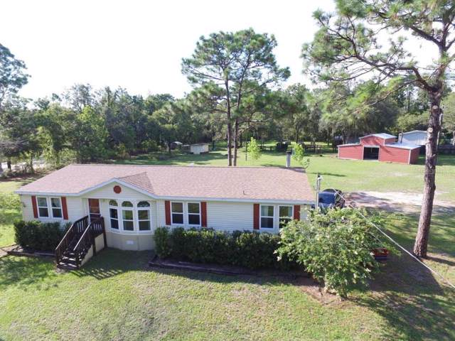 15219 Taralane Avenue, Brooksville, FL 34604 (MLS #W7815082) :: Rabell Realty Group