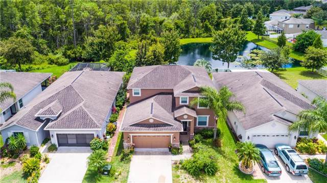 12810 Saulston Place, Hudson, FL 34669 (MLS #W7815097) :: Ideal Florida Real Estate