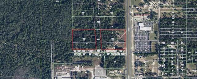 1310 S Suncoast Boulevard, Homosassa, FL 34448 (MLS #W7815109) :: Team 54