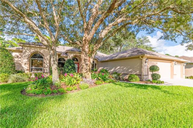 4933 Championship Cup Lane, Spring Hill, FL 34609 (MLS #W7815194) :: Griffin Group