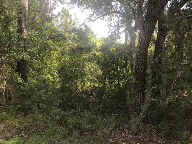 Short Rd. Short Rd., Hudson, FL 34667 (MLS #W7815201) :: McConnell and Associates