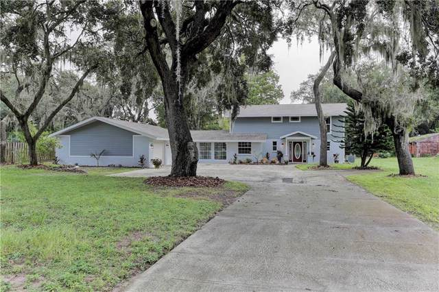 9020 Sharon Drive, New Port Richey, FL 34654 (MLS #W7815231) :: Griffin Group