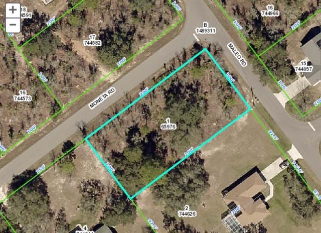 12498 Moneta Road, Weeki Wachee, FL 34614 (MLS #W7815237) :: Premier Home Experts