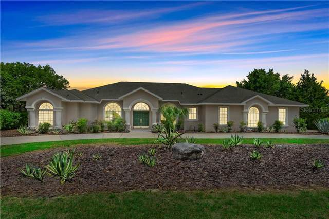 591 E Gilchrist Court, Hernando, FL 34442 (MLS #W7815283) :: Griffin Group
