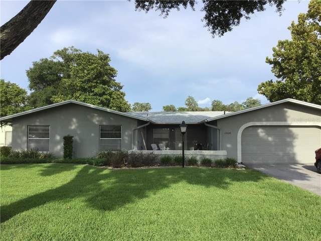 12026 Bayonet Lane, New Port Richey, FL 34654 (MLS #W7815284) :: Team 54