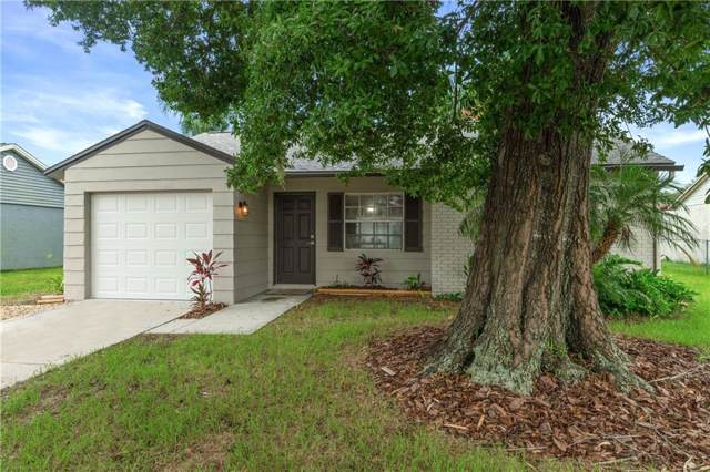 3151 Munson Street, New Port Richey, FL 34655 (MLS #W7815369) :: Griffin Group