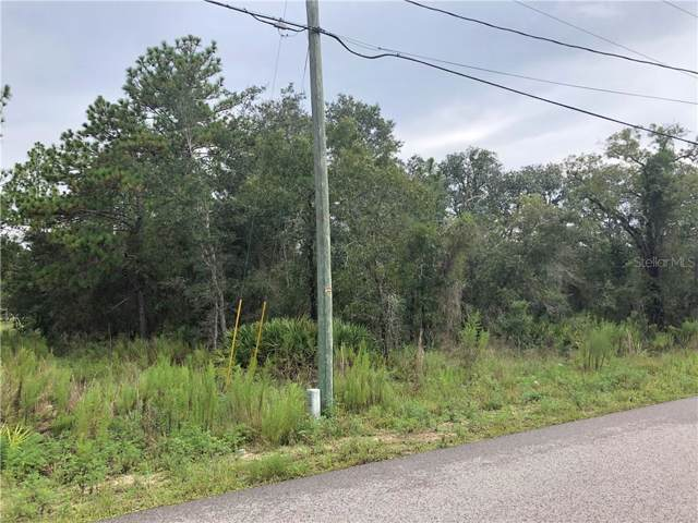 13127 Marbled Godwit Road, Weeki Wachee, FL 34614 (MLS #W7815391) :: Cartwright Realty