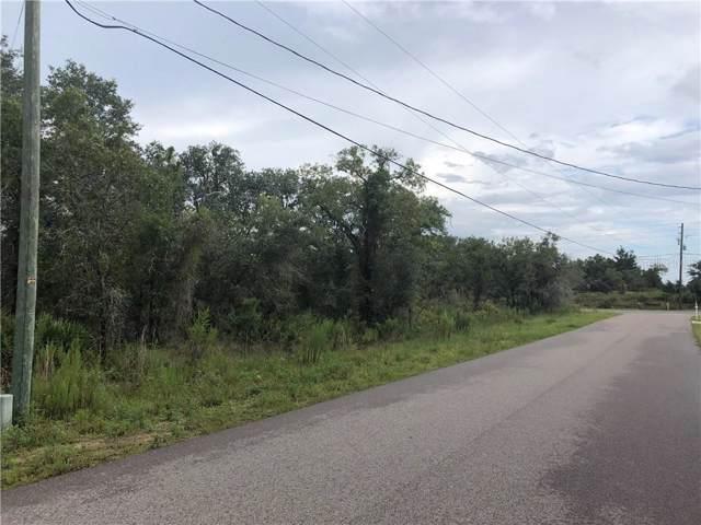 13147 Marbled Godwit Road, Weeki Wachee, FL 34614 (MLS #W7815394) :: Cartwright Realty