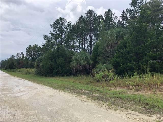 Ramsey Road, Weeki Wachee, FL 34614 (MLS #W7815395) :: Premium Properties Real Estate Services