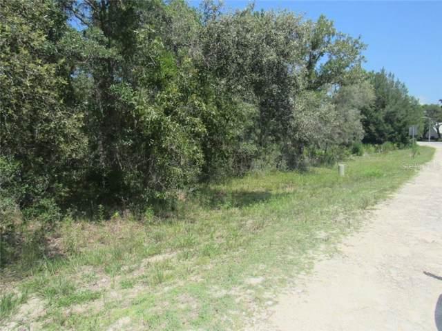 9147 Bunting Road, Weeki Wachee, FL 34613 (MLS #W7815399) :: Cartwright Realty