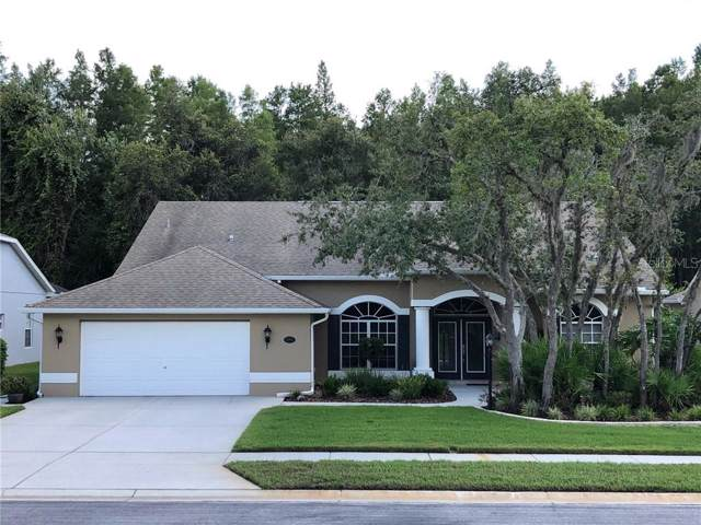 11741 Tee Time Circle, New Port Richey, FL 34654 (MLS #W7815418) :: Griffin Group