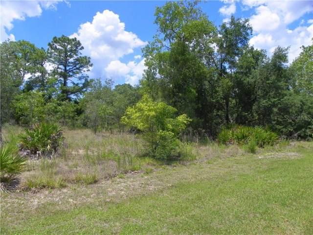 11023 Flicker Road, Brooksville, FL 34613 (MLS #W7815461) :: Premium Properties Real Estate Services