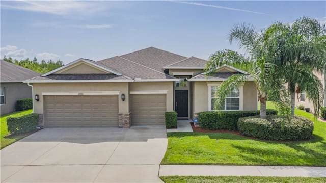 18460 Milton Keynes Court, Land O Lakes, FL 34638 (MLS #W7815463) :: Burwell Real Estate