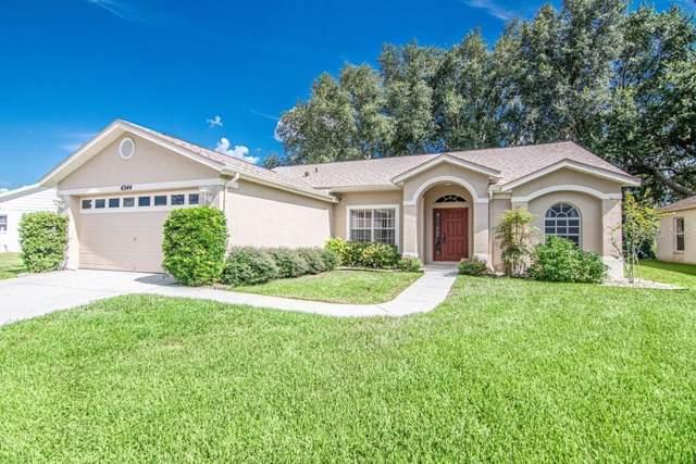 6344 Clark Lake Drive, New Port Richey, FL 34655 (MLS #W7815518) :: Armel Real Estate
