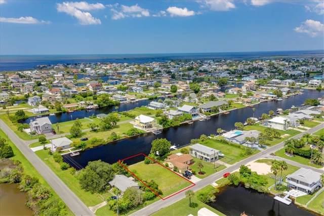 4093 Tampico Trail, Hernando Beach, FL 34607 (MLS #W7815528) :: 54 Realty