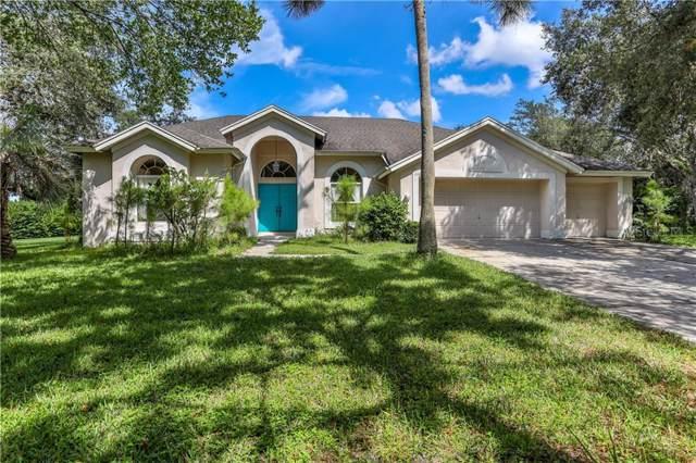 11095 Woodland Waters Boulevard, Weeki Wachee, FL 34613 (MLS #W7815538) :: Dalton Wade Real Estate Group
