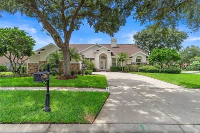12301 Seabrook Drive, Tampa, FL 33626 (MLS #W7815540) :: Team 54