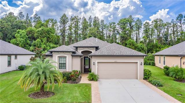 8431 May Port Court, Land O Lakes, FL 34638 (MLS #W7815564) :: RE/MAX CHAMPIONS
