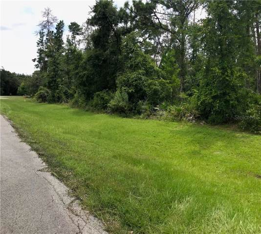 13915 Sand Oak Court, Hudson, FL 34669 (MLS #W7815574) :: Cartwright Realty
