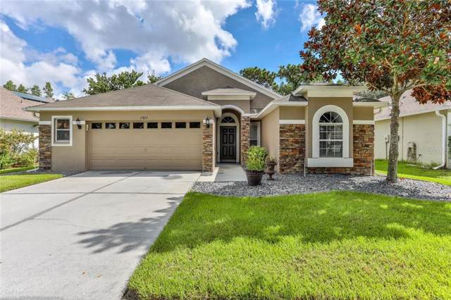 15813 Leatherleaf Lane, Land O Lakes, FL 34638 (MLS #W7815579) :: Lovitch Realty Group, LLC