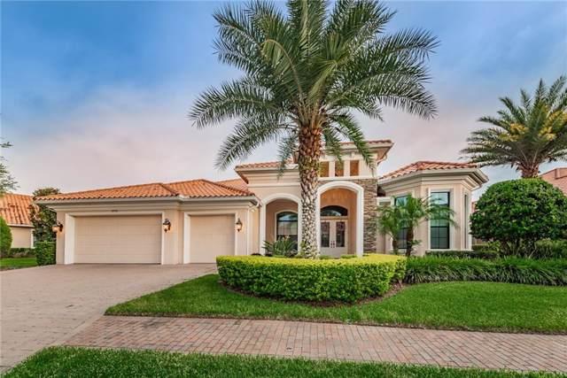 10736 Ruffino Court, Trinity, FL 34655 (MLS #W7815596) :: Premium Properties Real Estate Services