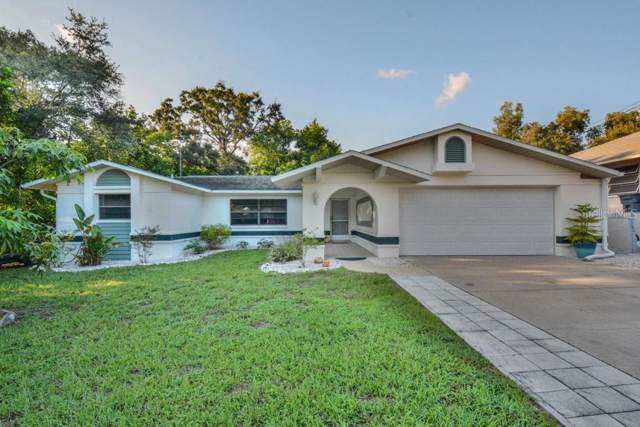 1105 E Lemon Street, Tarpon Springs, FL 34689 (MLS #W7815603) :: GO Realty