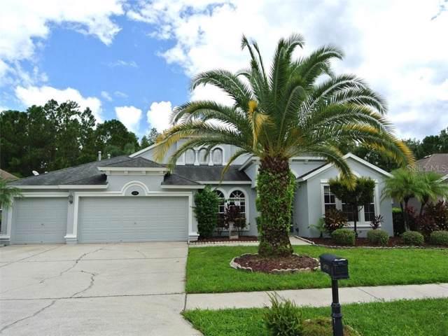 16716 Ivy Lake Drive, Odessa, FL 33556 (MLS #W7815609) :: Cartwright Realty
