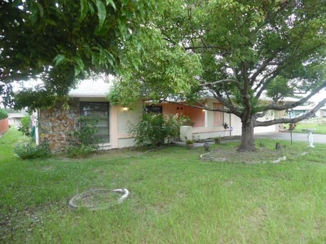 6936 Bottle Brush Drive, Port Richey, FL 34668 (MLS #W7815638) :: Ideal Florida Real Estate