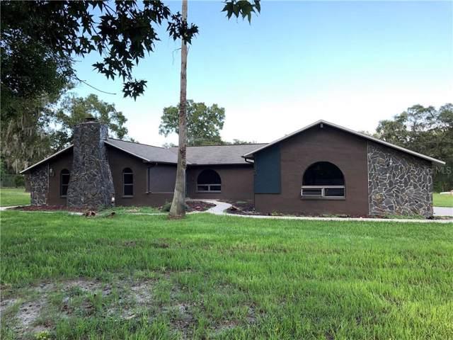 18528 Gracie Lee Street, Spring Hill, FL 34610 (MLS #W7815645) :: Sarasota Home Specialists
