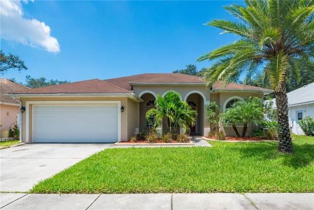 1753 Wood Haven Street, Tarpon Springs, FL 34689 (MLS #W7815759) :: GO Realty