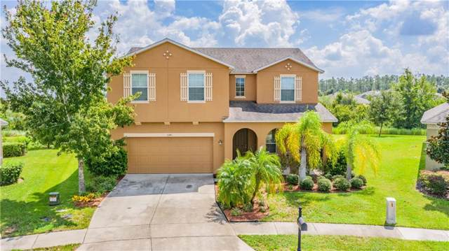 5341 Dittany Court, Land O Lakes, FL 34639 (MLS #W7815893) :: The Duncan Duo Team