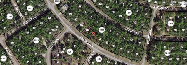 Address Not Published, Citrus Springs, FL 34434 (MLS #W7815915) :: Team Bohannon Keller Williams, Tampa Properties