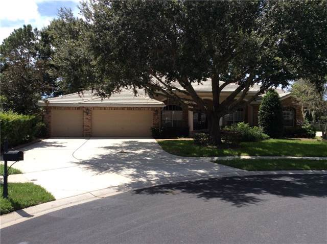 1006 Hagen Drive, Trinity, FL 34655 (MLS #W7815943) :: Delgado Home Team at Keller Williams
