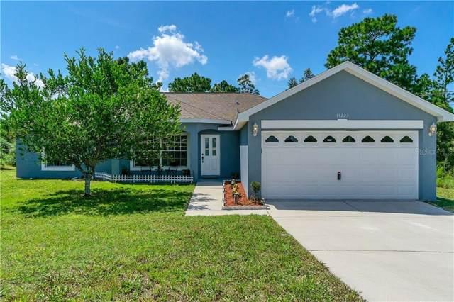 15223 Pomp Parkway, Weeki Wachee, FL 34614 (MLS #W7816025) :: White Sands Realty Group