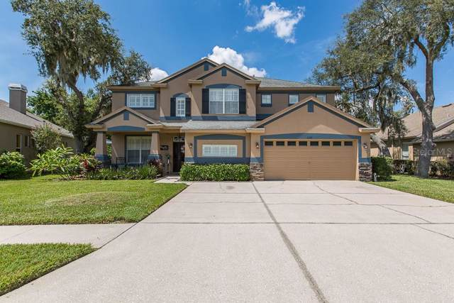 1533 Tawnyberry Court, Trinity, FL 34655 (MLS #W7816143) :: Bustamante Real Estate