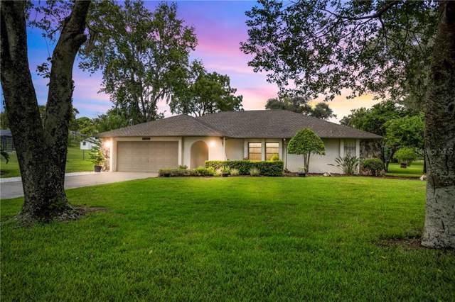 13050 Cooper Road, Spring Hill, FL 34609 (MLS #W7816145) :: Cartwright Realty