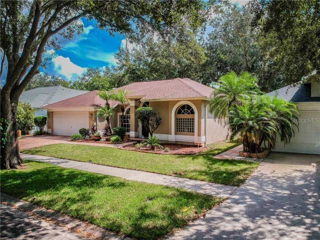 3722 Cypress Meadows Road, Tampa, FL 33624 (MLS #W7816156) :: The Duncan Duo Team
