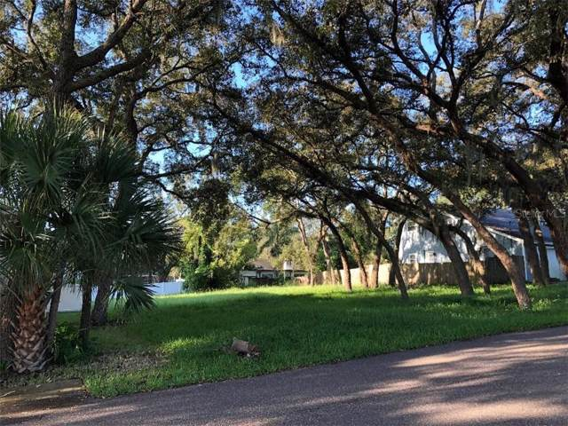 Forde Avenue, Tarpon Springs, FL 34689 (MLS #W7816169) :: GO Realty