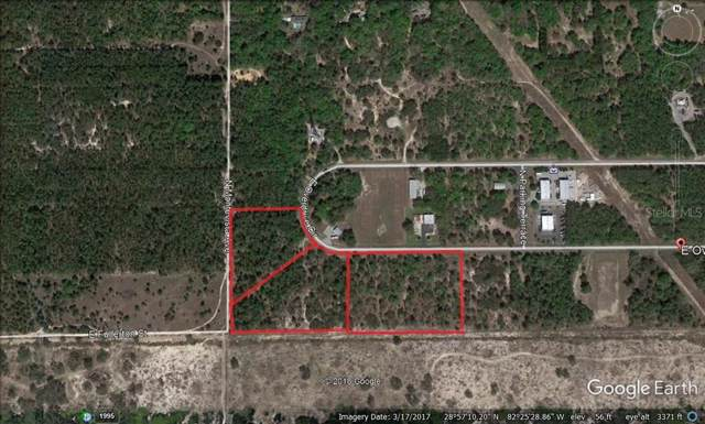 960 E. Overdrive, Hernando, FL 34442 (MLS #W7816215) :: Cartwright Realty