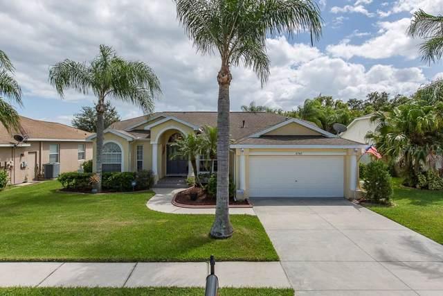 8742 Torchwood Drive, Trinity, FL 34655 (MLS #W7816236) :: Griffin Group