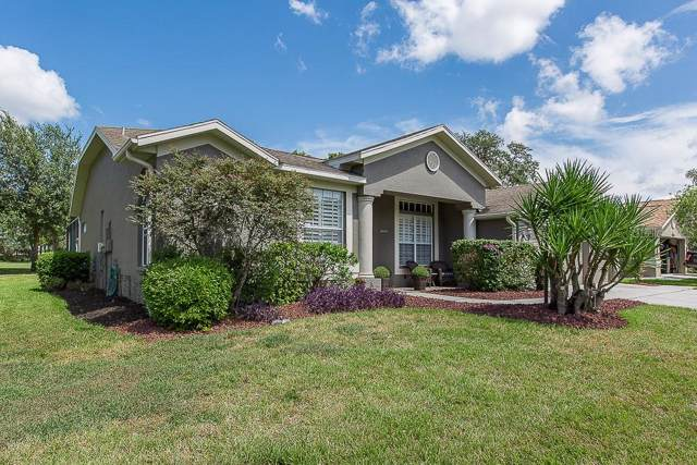 11133 Tee Time Circle, New Port Richey, FL 34654 (MLS #W7816238) :: Cartwright Realty