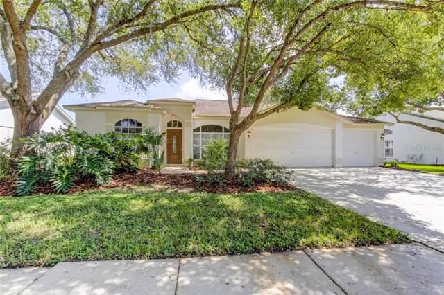 19701 Wyndmill Circle, Odessa, FL 33556 (MLS #W7816253) :: Premium Properties Real Estate Services